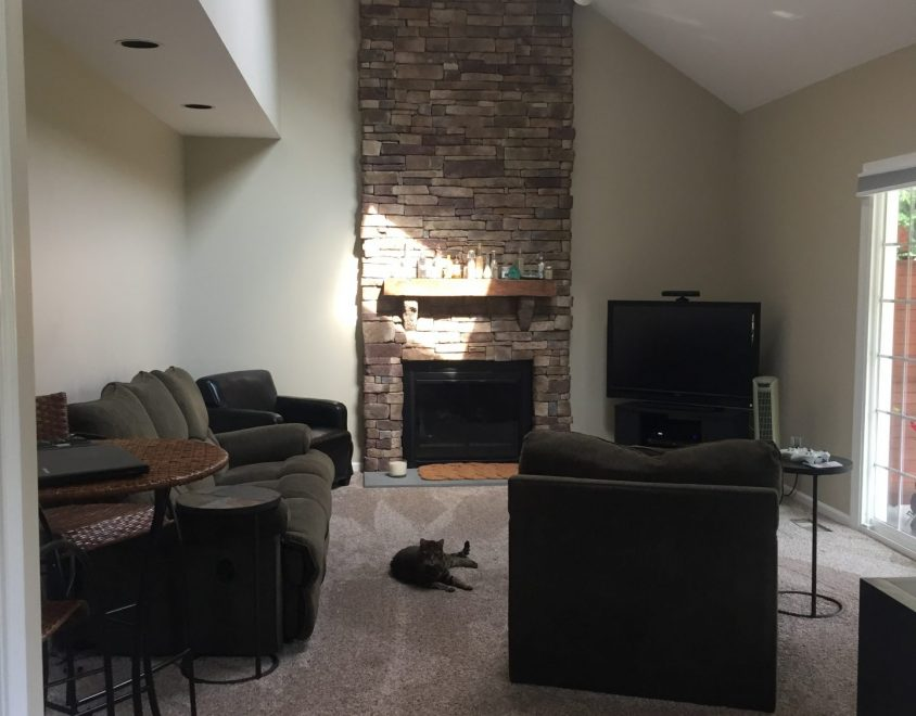 newly renovated living space with carpet furniture and fireplace